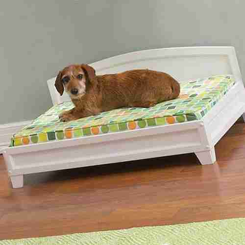 best elevated dog bed cover - Elevated Dog Beds