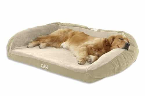 Large Dog Bed Size