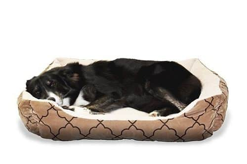 The Dog Crate Bed Buying Guide